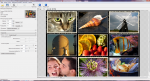 Главное окно PhotoZoom Pro